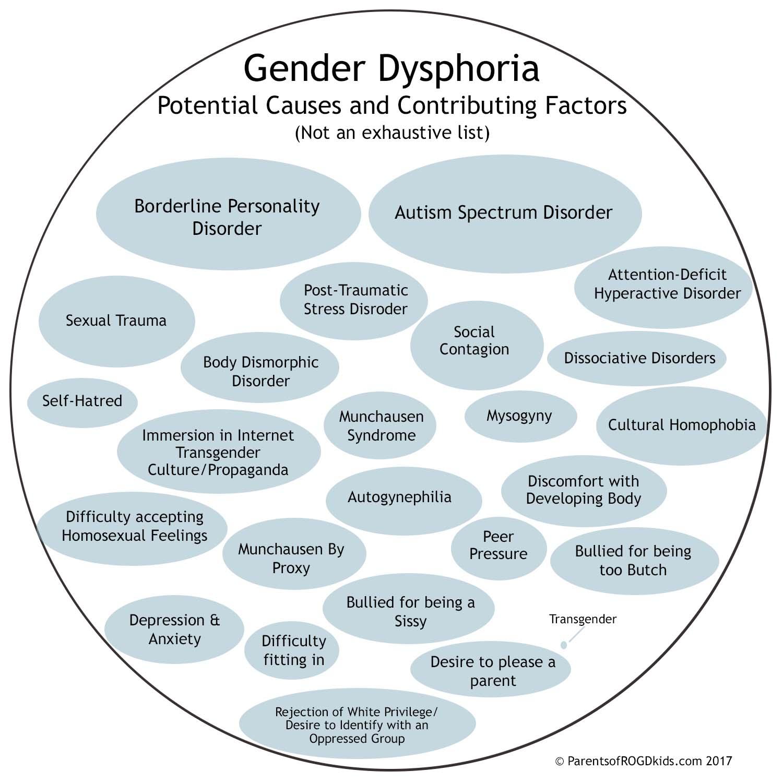 Andere oorzaken voor genderdysforie